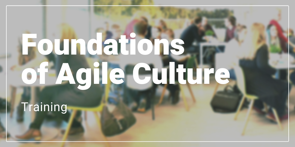 Foundations of Agile Culture Training